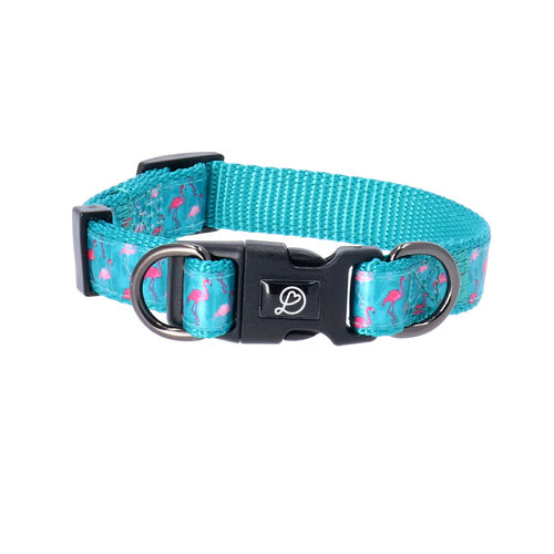 Dog Collar Adjustable Flamingo Green