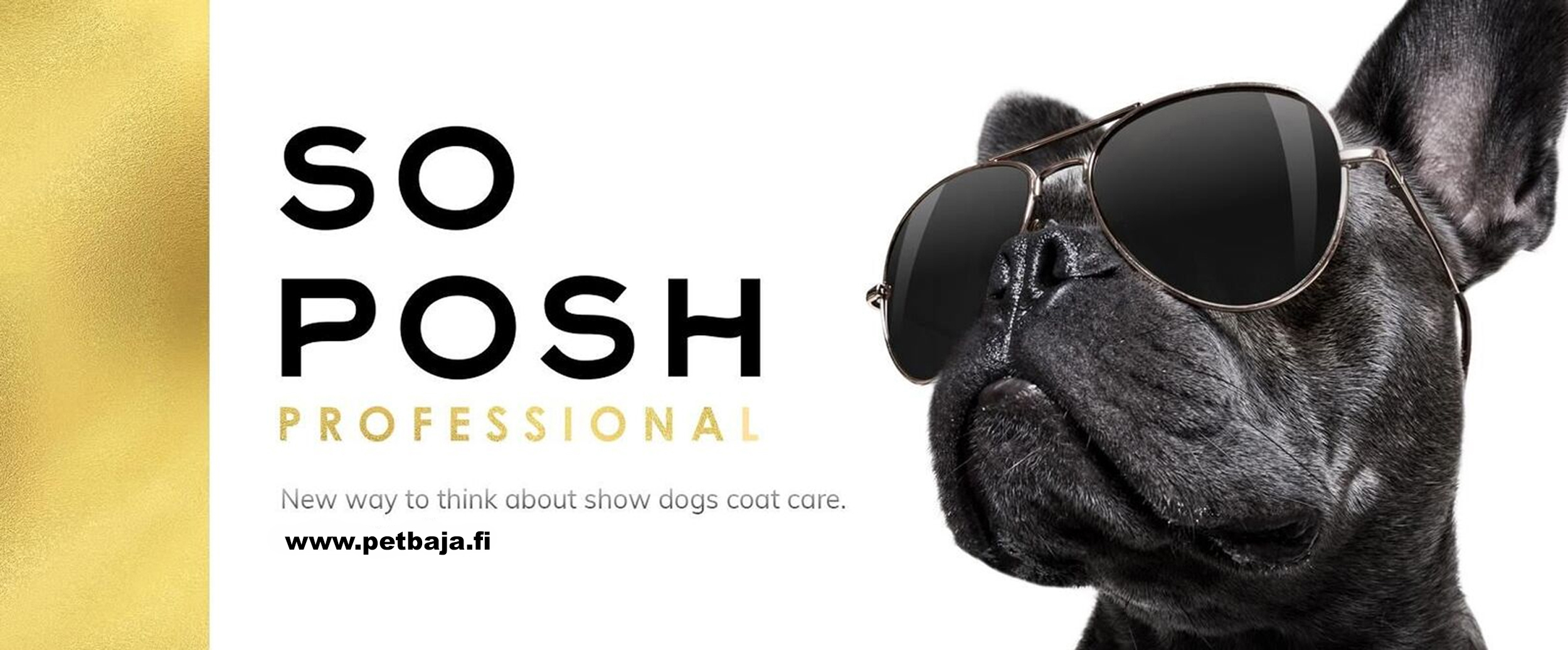 SO_POSH_Facebook_Cover_PetBaja_1_2019